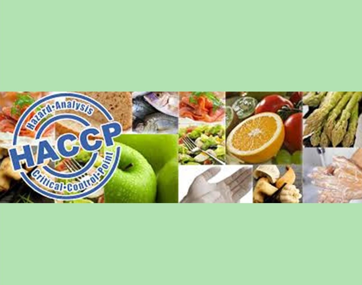Course Image Corso online HACCP – Igiene degli alimenti e delle bevande